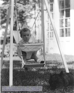 Charles A. Lindbergh Jr. in a swing, with Skean, the Lindbergh's Scotch terrier, 1931. The Manuscripts and Archives Digital Images Database (MADID)
