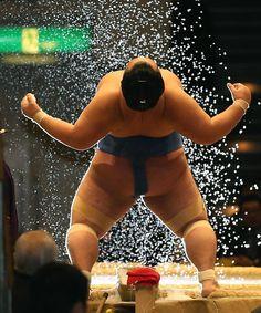琴奨菊 親友豊ノ島に敗れ13連勝ならず #琴奨菊 #琴バウアー #菊バウアー #イナバウアー #ルーティン #相撲 #sumo