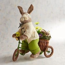 Scooter the Bicycle-Riding Natural Bunny
