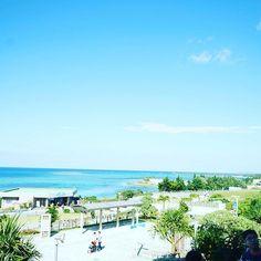 【mutomasa7777】さんのInstagramをピンしています。 《美ら海水族館! 是非フォローお願いします! Follow please! 他の写真も是非ご覧ください! Please also look at other photos  #沖縄#海#旅行 #九州 #景色#空 #雲#自然#旅行 #石#日本#きれい#青#緑#綺麗#okinawa #ocean #scenery#sky#cloud#nature #blue #green #japan #Beautiful#trip #木#woodlove、 #instagood、 #tbt、#photooftheday》