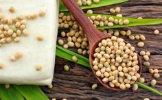 """Report Cards Are in, and Soy Gets a Big, Fat 'F' 