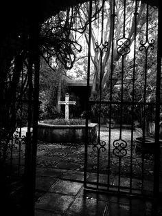 White Photography, Black And White, Black N White, Black White