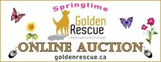 Bath Products, Kitchen Items, Gift Cards, Handicraft, Spring Time, Fundraising, Announcement, Frames, Auction