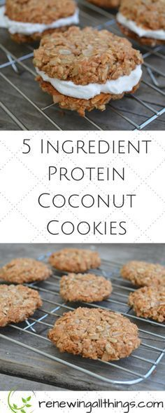 5 Ingredient Protein Coconut Cookies- gluten free, grain free dairy from vegan and paleo healthy cookies! These are amazing made with coconut flakes and sunflower seeds!