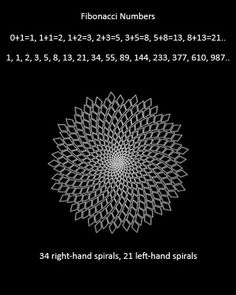 3a19e6244a18bc1ac42d480eab87c52f.jpg 320×400 pixels