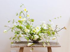 All the fresh Spring glory - all from my garden except the little scented narcissus and ranunculus from @flowersbyclowance I can't wait for that magnolia bud to open - the tree in my garden is magnificent right now - I just hope we don't get a frost!! Enjoy the sunshine this weekend! . . #gatherandcurate #underthefloralspell #cuttinggardencollective #embracingtheseasons #weekendflowers #mystillsundaycompetition #inspiredbypetals #prettycreativestyle #curated_nature #aquietstyle_spring…