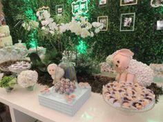 Festa principe que guardava ovelhas_acdg (2)