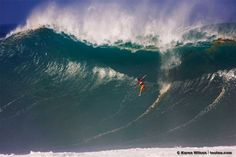 Taking a spill on a big day at Waimea Bay on Oahu, Hawaii.