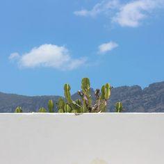 Dzisiaj mały rest. Wycieczka w góry. Bo nie zapominajmy...Gran Canaria ma szczyty sięgające 2000m n.p.m. i najwyższe klify europy. - Go team go!! - #surf #kanary #grandcanaria #laspalmas #podróże #wycieczki #naukasurfu #fun #góry #góralki #wyjazdy #surfkanary #kanarysurf #pierwszalinia #plaza #surfszkoła #pakiety