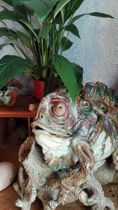Sculptures in clay stoneware by Sylvain and Tara Bongard, studio in Ferragudo, Algarve. Chameleon, Stoneware, Clay, Ceramics, Sculpture, Studio, Sculpting, Chameleons, Ceramic Art
