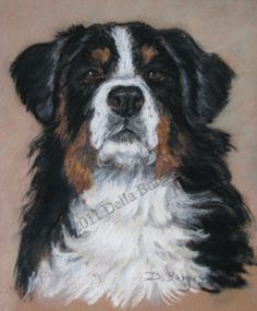 Dog Art Dogs Bernese Mountain Dog by Della Burgus -- Art Helping Animals