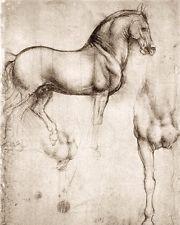 LEONARDO DA VINCI SKETCH PAINTING STUDY OF HORSE SHAPE REAL CANVASART PRINT
