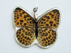 Real Orange and Black Spotted Butterfly Pendant by BethsMelange, $10.00