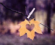 3.bp.blogspot.com -4_T2Ncx-SV4 VgTxQgdCxwI AAAAAAABtQc oaUP8XMtMG4 s1600 Autumn-Wedding-Confetti-Craft-Bride-Leaf-Punch-Wedding-Ideas-BeforetheBigDay-Blog%2B2.jpg