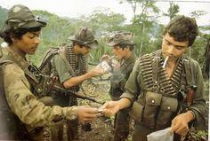 Sandinistas, Matagalpa Department, 1984