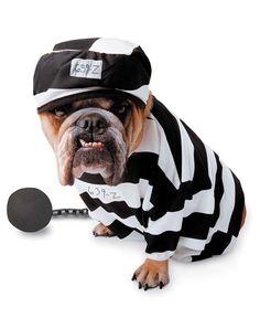 Jail Break!