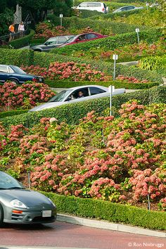 Lombard Street, San Francisco, California – The Crookedest Street in the World - photo by Ron Niebrugge