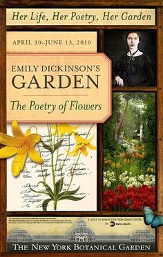 """Brooklyn Botanical Garden and the Poetry Society of America are reminding us that her two loves went hand in hand.As co-presenters, they have put together a display in the Enid A. Haupt Conservatory at the BBG that runs through June 13. Called """"Emily Dickinson's Garden - The Poetry of Flowers"""", the display features such """"old-fashioned"""" flowers and plants as delphiniums, lupines, honeysuckle, roses, lilies, peonies, tulips, lily of the valley, ferns and hydrangeas."""