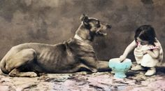 Little Girl giving water to Great Dane Dog, original old c1905 photo postcard