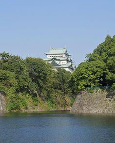 Nagoya Castle #japan #aichi