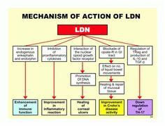 25 Low Dose Naltrexone Ideas Low Dose Naltrexone Dose Autoimmune Disease
