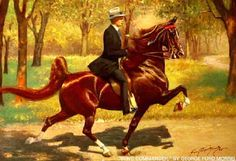 Wing Commander: The Great American Show Horse | International Museum of the Horse