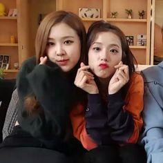 Rosé and Jisoo (Blackpink) Yg Entertainment, South Korean Girls, Korean Girl Groups, Blackpink Youtube, Rose Icon, Blackpink And Bts, Blackpink Photos, Park Chaeyoung, Jennie Blackpink