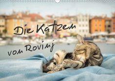 Die Katzen von Rovinj - CALVENDO Kalender von Viktor Gross