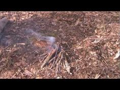 Fire Tricks and Tips Pine Sap Accelerant