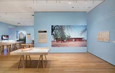 MoMA Exhibit Design