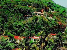 Wild Haiti!! Haitian vacation!!