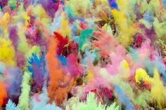 Google Image Result for http://msnbcmedia.msn.com/j/MSNBC/Components/Photo/_new/pb-120729-holi2-cannon.photoblog900.jpg  Wow! How fun. Didn't even know anything like this existed.