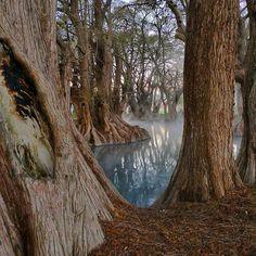 Lago de #Camecuaro, #Mexico Lindo #Michoacan Mario Oropeza Camecuaro Lake in Michoacan, Mexico Tour By Mexico - Google+