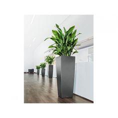 Lechuza Cubico Alto Planter
