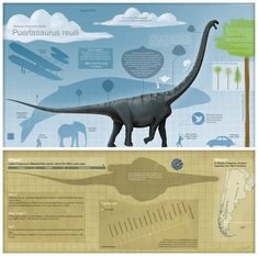 Puertasaurus infographic by =ChrisMasna on deviantART #Titanosaur
