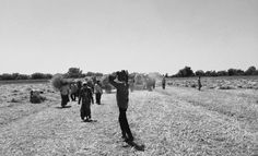 #laboures  #farmlife  #ShotoniPhone  #monochrome #blackandwhite #bnw_city #bnw_life #bnw_captures #storiesofindia #bnw_india #artofvisuals #vivacioustones #agameoftones #everydayindia #desi_diaries #igramming_india  #iiframe #inspiroindia #instagram_ahmedabad #vsco #vscocam #jj_mobilephotography #worldbestgram #foto_blackwhite #official_photography_hub #ig_worldclub #iphone #myfantasytravel #bnw_city #bnw_captures #bnw_nice by pdhruval95