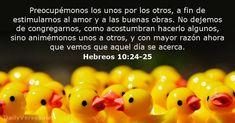 the pentecostal minister sermon resource manual