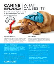 CANINE INFLUENZA   https://www.avma.org/PracticeManagement/ClientMaterials/Pages/clinic-posters-client-handouts.aspx