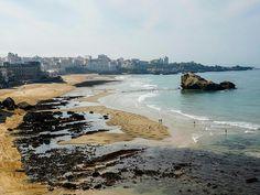Beach Art/Sam Dougados/Ronroche Biarritz