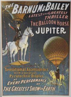 jupiter the balloon horse