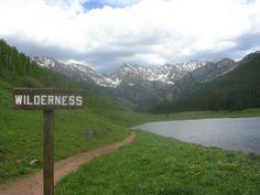 Google Image Result for http://1.bp.blogspot.com/_Z-DEoN3ydt4/S7uiUIgLGJI/AAAAAAAABOU/z5JplfRiA8E/s1600/Wilderness.jpg