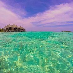 Vai um mergulho? #travel #traveling #TFLers #vacation #visiting #instatravel #instago #Maafushi Island #Maldives #PlanetOfBeauty