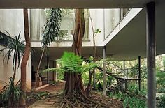 Lina Bo Bardi, Casa de Valentina. Is it a skylight if you are standing on undisturbed soil?