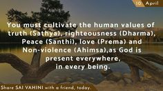 You must cultivate the human values of truth (Sathya), righteousness (Dharma), Peace (Santhi), love (Prema) and Non-violence (Ahimsa), as God is present everywhere, in every being.  #DailyQuotes #SaiQuotes #SathyaSaiBaba #Learnings #SaiVahini #ThoughtForTheDay #QuotesOfSai #Wisdom #OmSaiRam #JaiSaiRam #TheVoiceOfGod