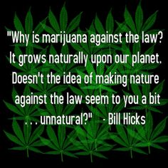 Sacred Weed blog update: Great quote by Bill Hicks, hilarious public service entertainment, and fun toys.