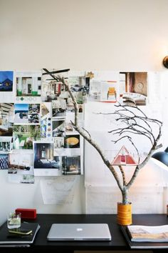 Southern Living in Charleston - Design Sponge