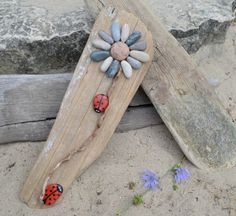 Ladybugs on the move. Flower driftwood art, one of a kind