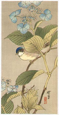 Kawanabe Gyosui  Title: Blue Bird on a Blossoming Branch