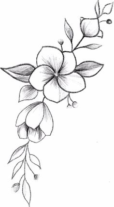 Next Post Previous Post Next Post Previous Post Easy Flower Drawings, Flower Art Drawing, Pencil Drawings Of Flowers, Art Drawings Sketches Simple, Flower Sketches, Pencil Art Drawings, Easy Drawings, Flower Bouquet Drawing, Simple Flower Drawing