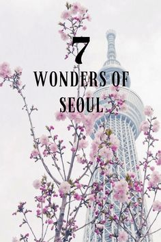 The 7 Wonders of Seoul